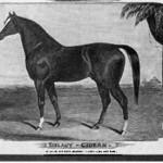 Sielauy Gidran (Seward)